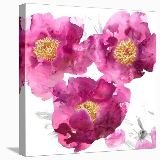 Pink Bloom II-Vanessa Austin-Stretched Canvas Print