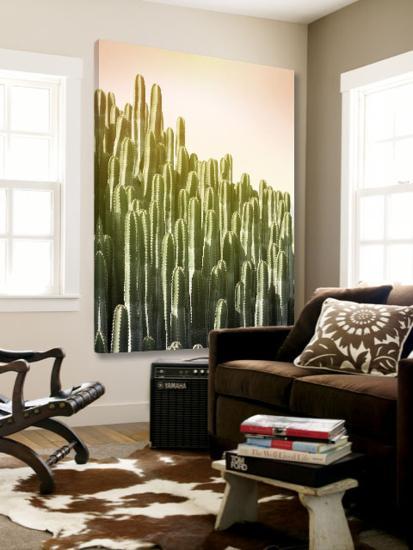 Pink Sky Cactus-Lexie Greer-Loft Art