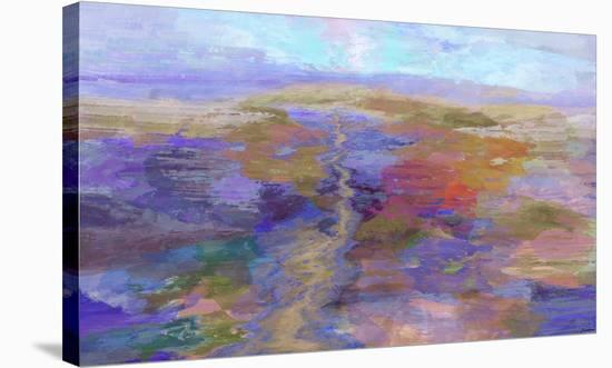 Plateau II-Michael Tienhaara-Stretched Canvas Print