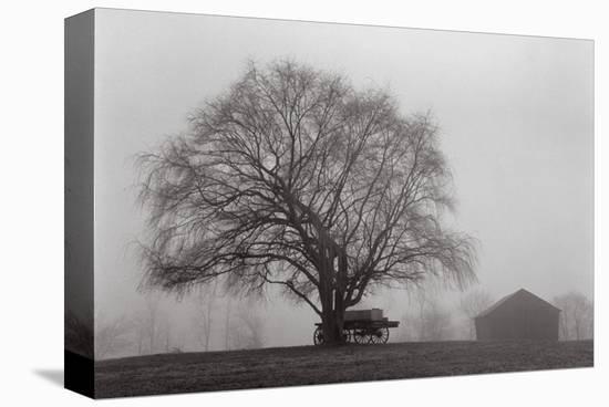 Pleasant Hill-Jim Morris-Stretched Canvas Print