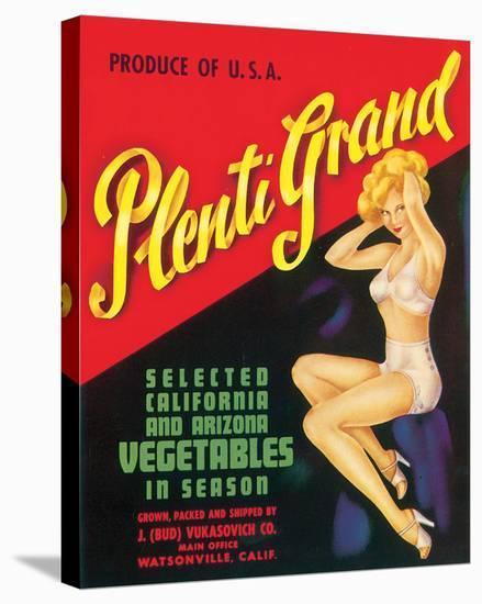 Plenti Grand Vegetables--Stretched Canvas Print