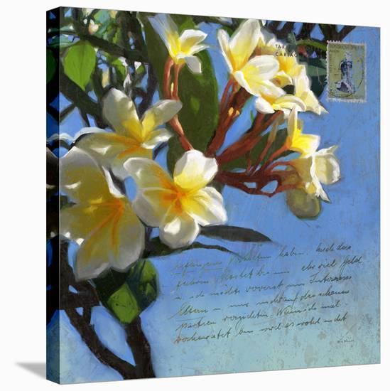 Plumeria 01-Rick Novak-Stretched Canvas Print
