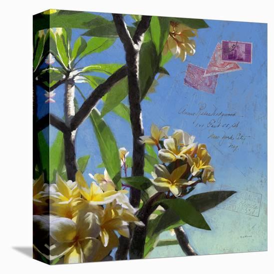 Plumeria 02-Rick Novak-Stretched Canvas Print