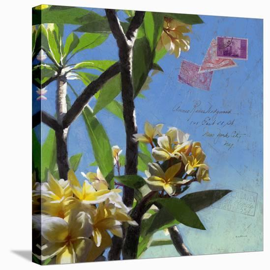 Plumeria 02-Rick Novak-Stretched Canvas Print