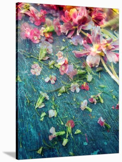 Poetic Layer Work from Flowers-Alaya Gadeh-Stretched Canvas Print