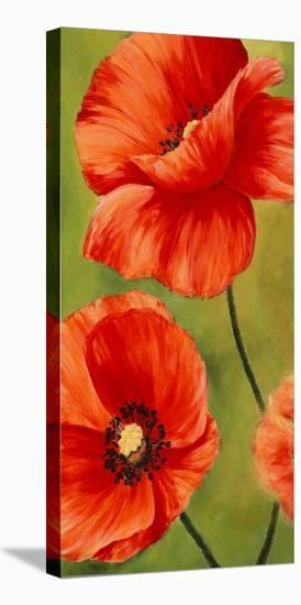 Poppies In The Wind I Stretched Canvas Print Luca Villa Art Com