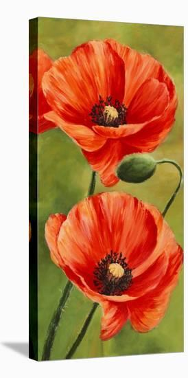 Poppies In The Wind Ii Stretched Canvas Print Luca Villa Art Com
