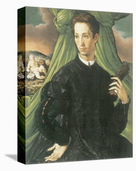 Portrait Of A Man-Francesco Salviati-Stretched Canvas Print