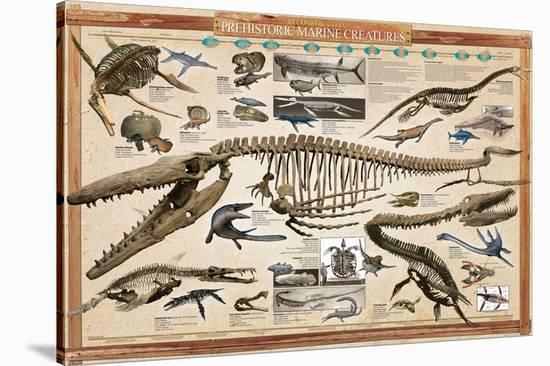 Prehistoric Marine Reconstruct--Stretched Canvas Print