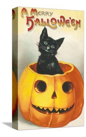 a-merry-halloween-cat-in-jack-o-lantern