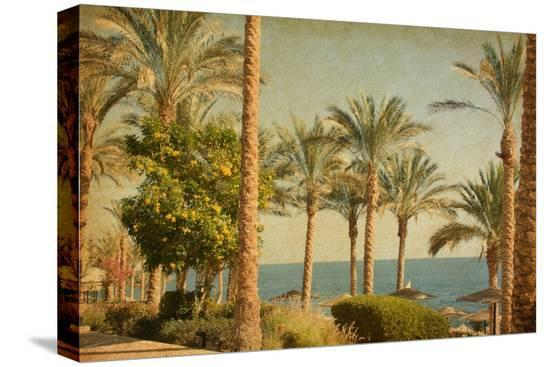 a-nella-retro-image-of-beach-with-date-palms-amid-the-blue-sea-and-sky-paper-texture