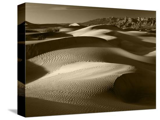 adam-jones-mojave-desert-sand-dunes-death-valley-national-park-california-usa