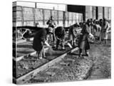 African American Women Working on a Railroad Crew