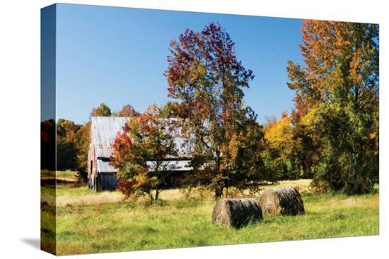 alan-hausenflock-autumn-scene-i