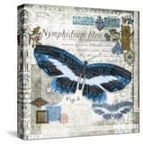 Butterfly Artifact III