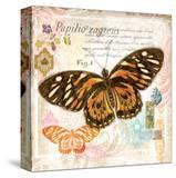 Butterfly Artifact Pink