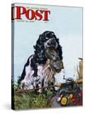 """Butch Fishes for a Shoe "" Saturday Evening Post Cover  August 21  1948"