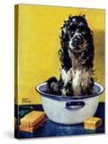 """Butch Gets a Bath "" May 11  1946"
