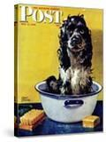 """Butch Gets a Bath "" Saturday Evening Post Cover  May 11  1946"