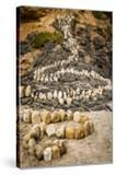 California  Santa Barbara  Montecito  Butterfly Beach  Stone Sculpture