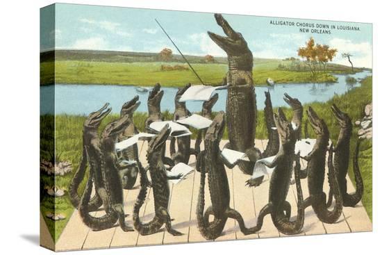 alligator-chorus-in-new-orleans-louisiana
