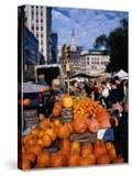 Pumpkins for Sale at Farmers' Market on Union Square  New York City  New York  USA