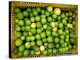 Basket of Fresh and Juicy Key Limes