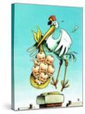 """""""Stork and Quints """" April 1  1984"""