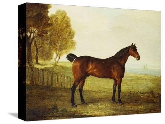 benjamin-marshall-the-chestnut-hunter-berry-brown-in-a-field-by-an-estuary-with-sailing-ships-in-the-distance