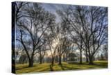 USA  WA  Walla Walla Pioneer Park Gazebo