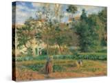 Vegetable Garden at the Hermitage  Pontoise