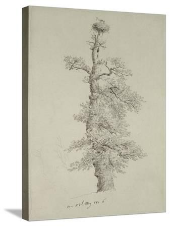 caspar-david-friedrich-ancient-oak-tree-with-a-stork-s-nest-23rd-may-1806