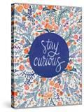 Stay Curious in Navy and Red