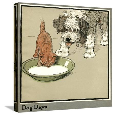 cecil-aldin-rufus-the-cat-drinks-from-a-bowl-watched-by-a-dog