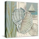 Seaside Shell I