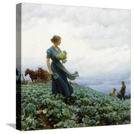 charles-courtney-curran-the-cabbage-field-1914