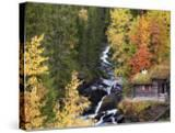 Forest of Birches and Aspens in Autumn by Brook with Traditional Wooden Forest Hut