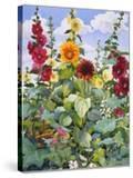 Hollyhocks and Sunflowers  2005