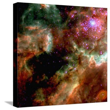 cluster-in-large-magellanic-cloud