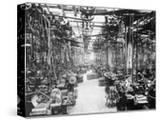 Crankshaft Grinding Department at Ford Motor Company