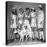 Dalmatian Fashion  Paris  26 October 1967