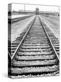 View of Birkenau Entrance and Railway Line That Brought Prisoners In  Poland