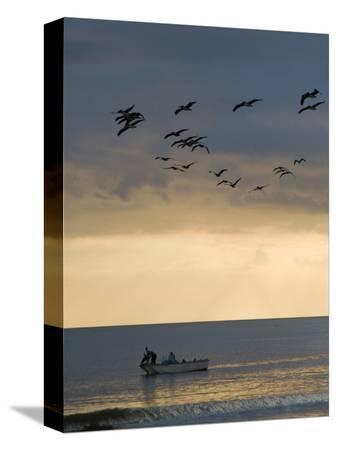 david-evans-north-carolina-fishermen-cast-nets-under-flock-of-pelicans-at-sunset