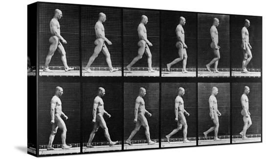 eadweard-muybridge-man-walking-from-animal-locomotion-1887-b-w-photo