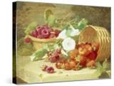 Baskets of Strawberries  Raspberries and Convolvulus