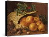 Still Life with Apples  Hazelnuts and Holly  1898