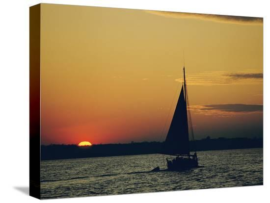 emory-kristof-skipjack-silhouetted-at-sunset