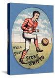Well Shot Stoke Swifts