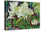 Flowering Trees IV; Bluhende Baume IV  1909