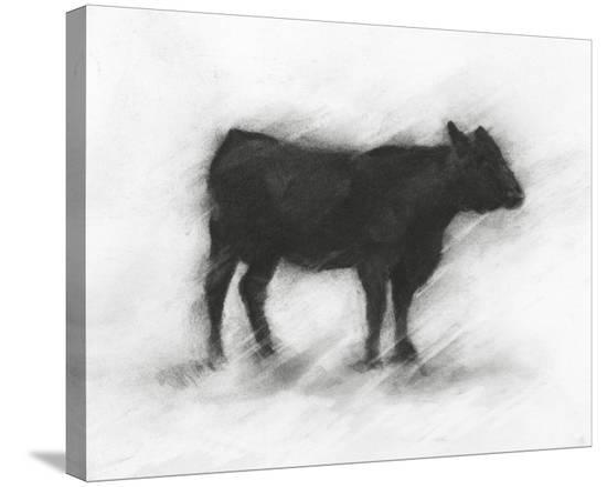 ethan-harper-charcoal-bovine-study-ii